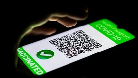 Handy mit Grünem Pass